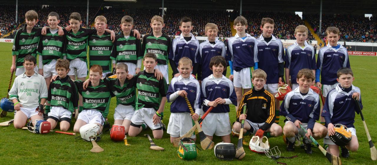Carrickshock Schools Nowlan Park March 29