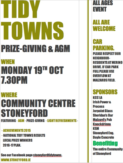 Tidy Towns 2015