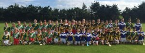 Carrickshock, Tullogher, Galmoy and Borris-Kilcotton teams enjoying the Go Games finals last Saturday.